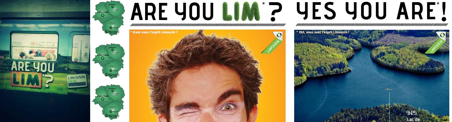 Are you LIM ? nous, oui ! on a référencé 150 entreprises dans la région !