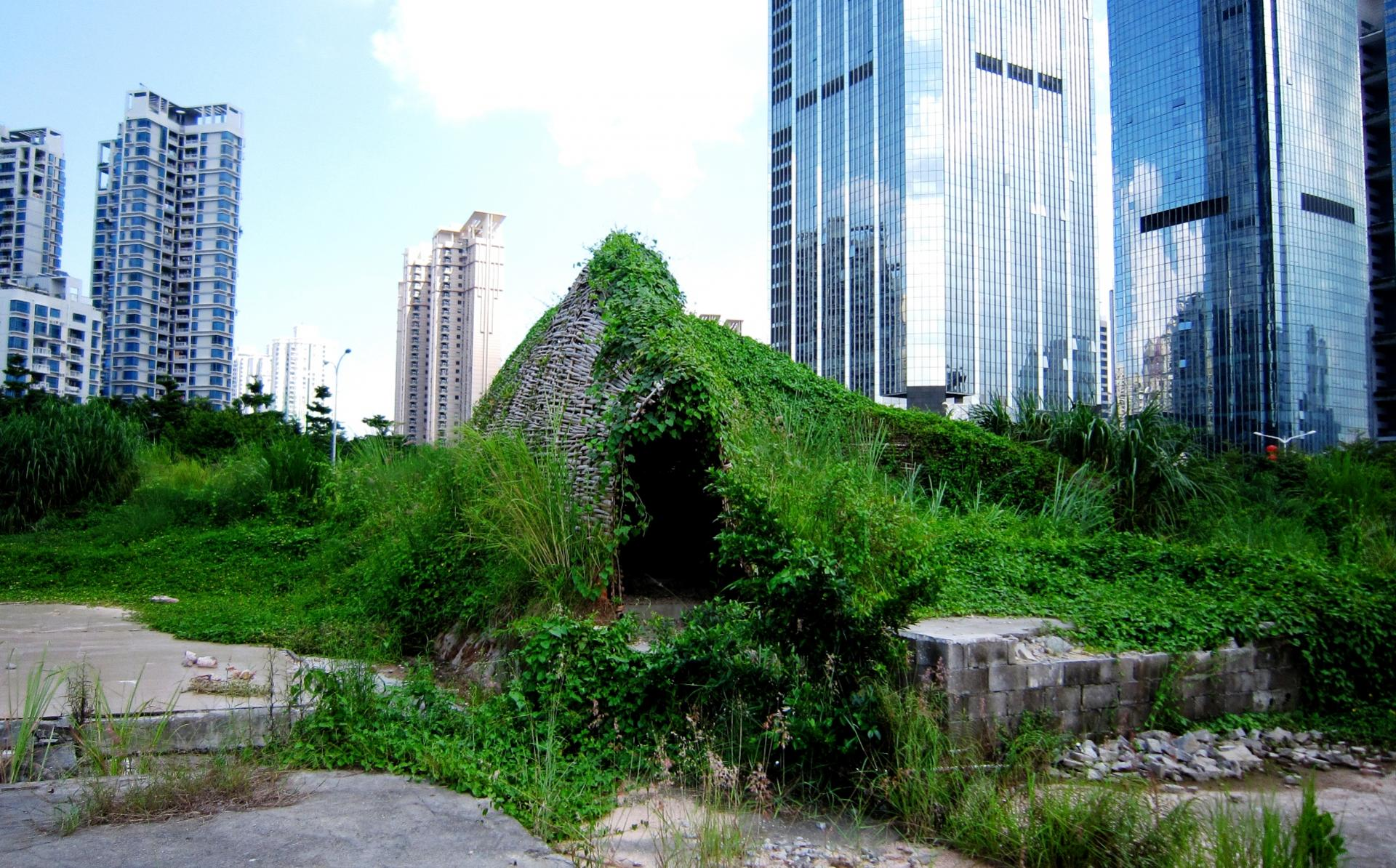 Bug dome by weak in shenzhen wikimedia commons