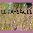 El paysages | Elodie Luchini