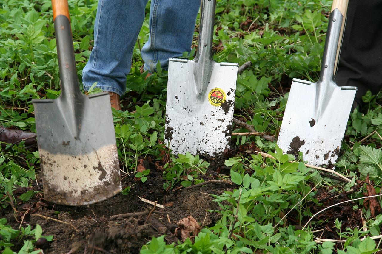 Gardening 331986 1280