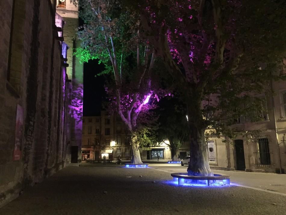 Places Avignon Clémence Letulle 4
