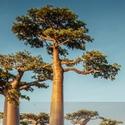 Ökoside | Ökotipps und Umweltschut