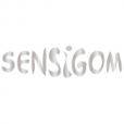 Sensigom | concepteur et aménageur d'aire de jeux interactives