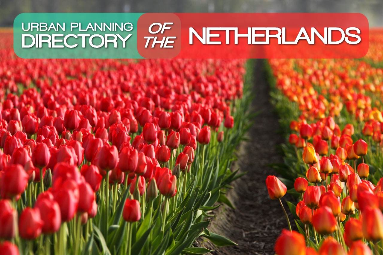Tulipes directory of the netherlands